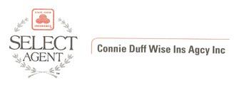 Connie Duff Wise Ins Agcy Inc Logo